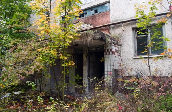 Заброшенный дом в зарослях