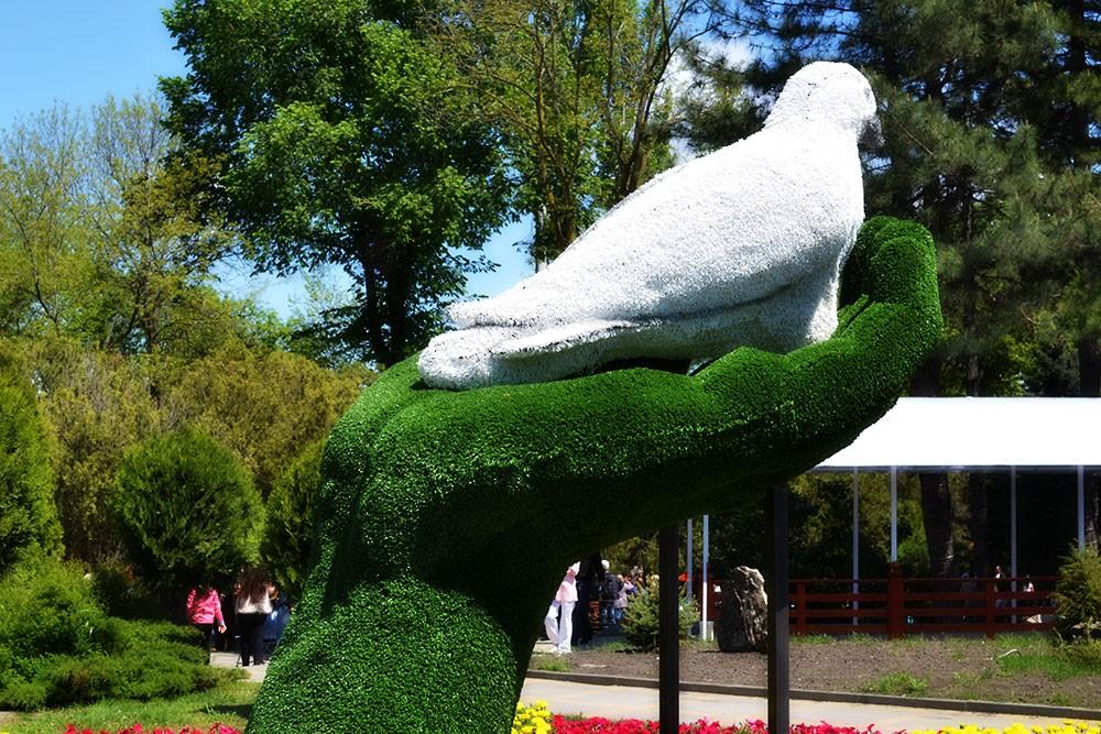 Анапский голубь мира