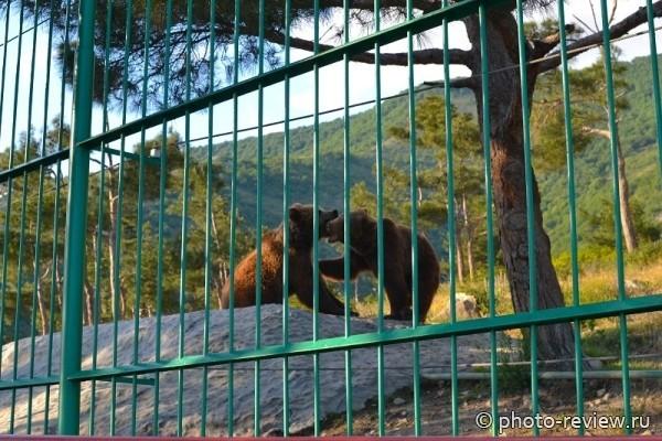 Сафари парк в Кабардинке