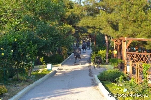Сафари парк в Геленджике фото