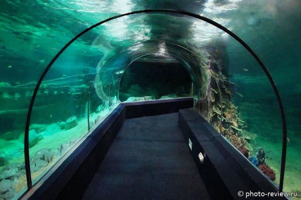 стеклянный тоннель