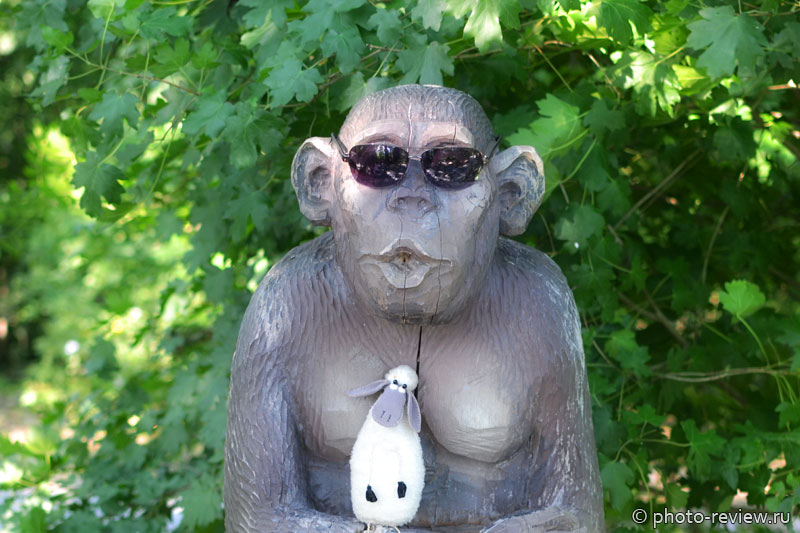 овечка дуся и обезьян