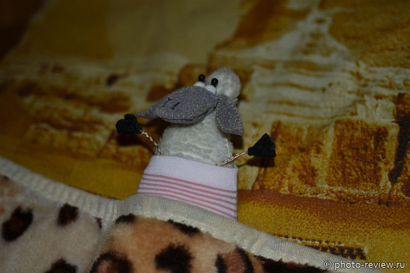 овечка дуся спит
