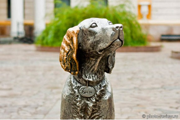 Памятник  Белому Биму Черное Ухо в Воронеже