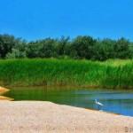 озеро ханское краснодарский край