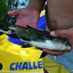 рыбалка на озерне