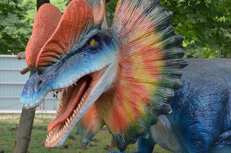 живые динозавры в Геленджике