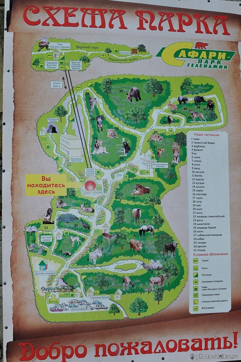 Сафари парк в Геленджике схема