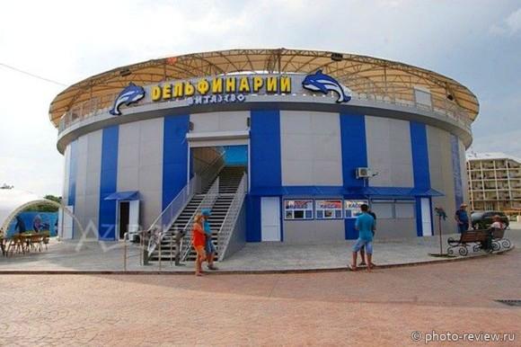 "Дельфинарий ""Немо"" в Витязево"