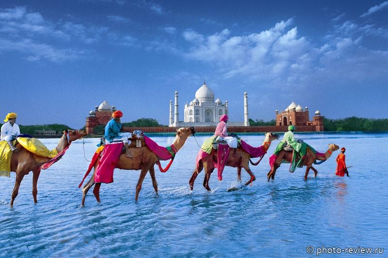 отдых зимой в Индии