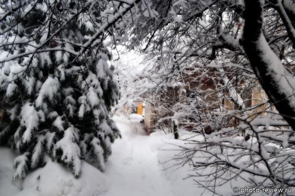 всё в снегу
